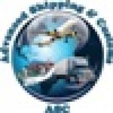 ADVANCED SHIPPING & CUSTOMS (ASC)