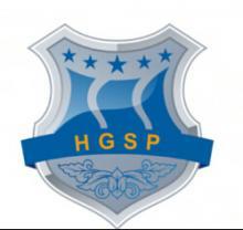 Hunan great steel pipe company Logo